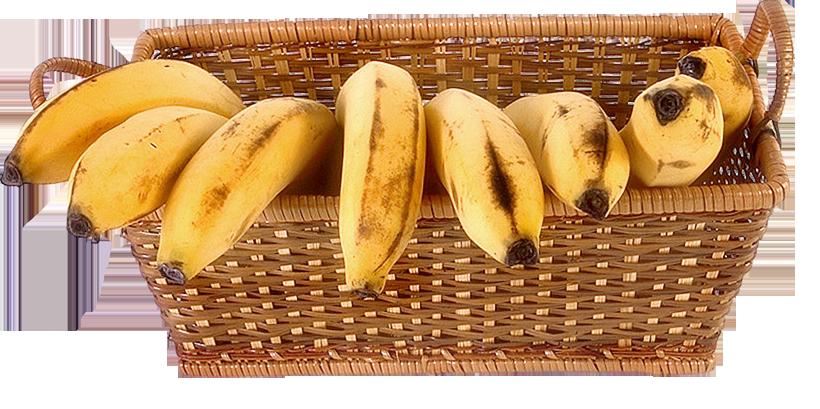 Бананы.png