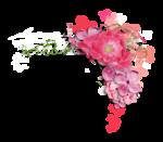Palvinka_FlowerEssence_cluster (12).png