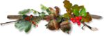 autumn dreams by_mago74 PNG (3).png