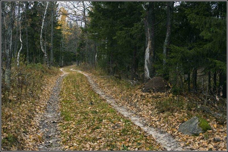 Дорога на вершину (03.10.2013)