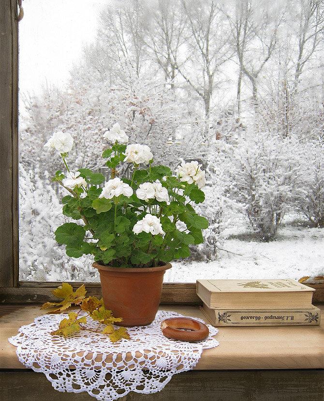 картинки красивые снег идет с добрым утром работе коррекцией
