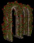 садовая   арка  и  кр.цветы.png