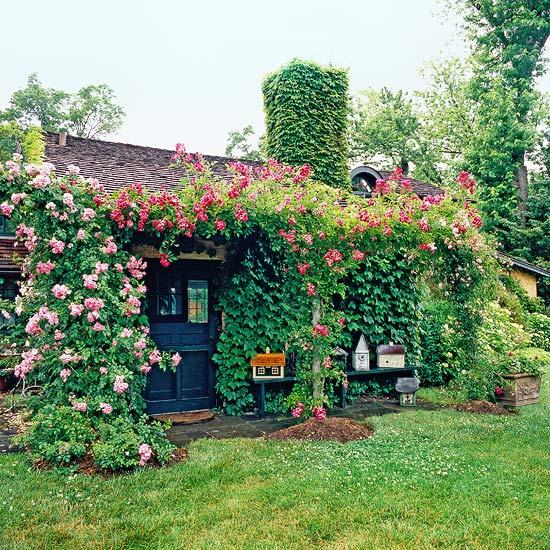 Ландшафт - Идеи оформления переднего дворика дома-Креатив-уют