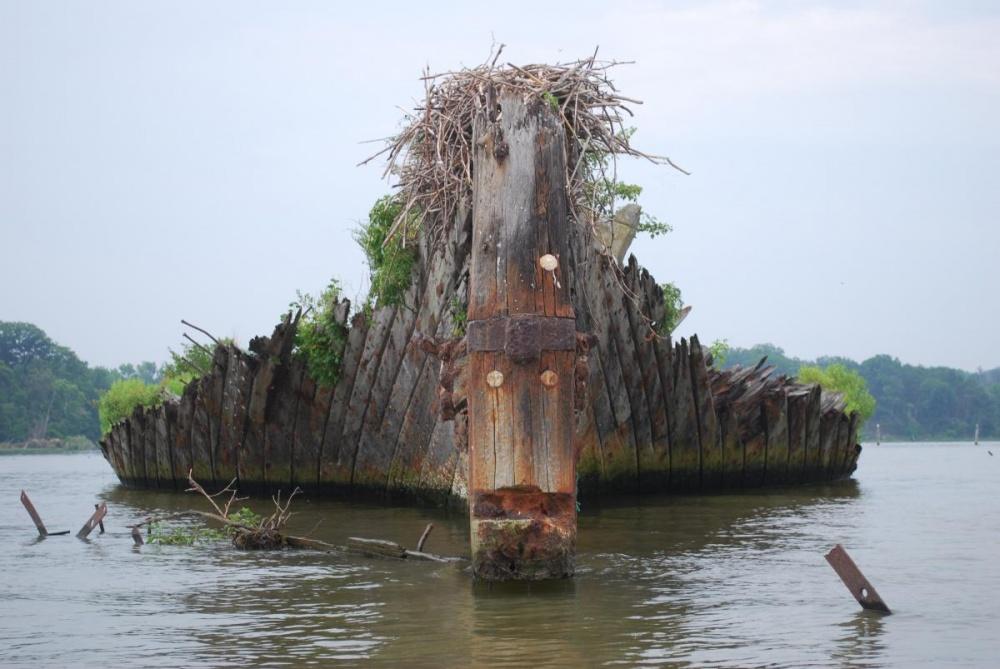 Назнаменитое кладбище кораблей вбухте Мэллоу-Бэй отправляют умирать десятки судов. Они похожи нап