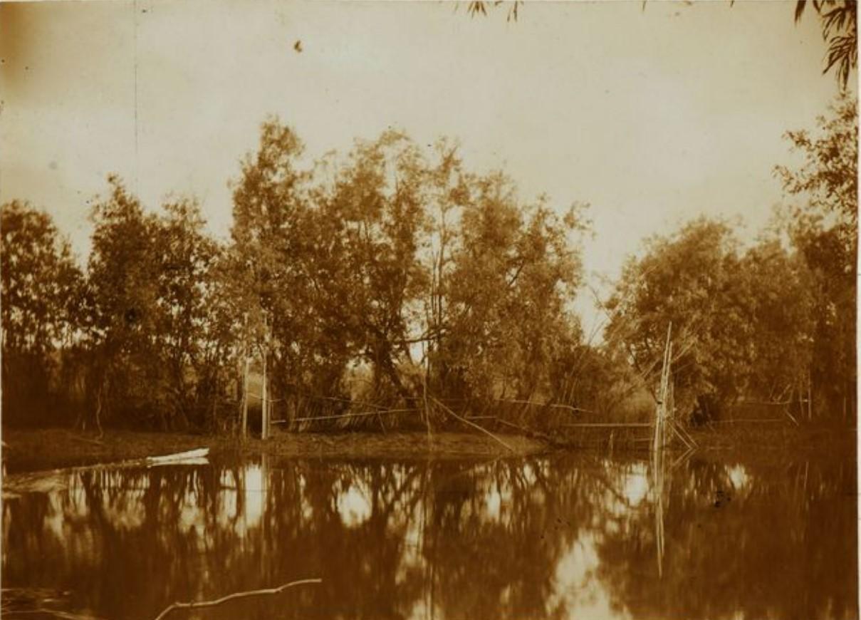 В устье реки Сыгва
