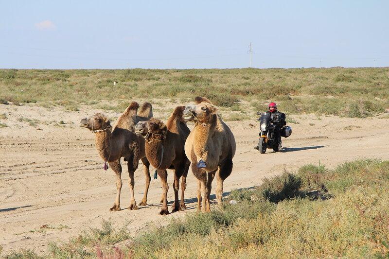 дорога на Памир... 0_ab859_52206f10_XL