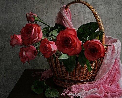 Розы в корзине, на которую накинут розовый шарф открытка поздравление картинка