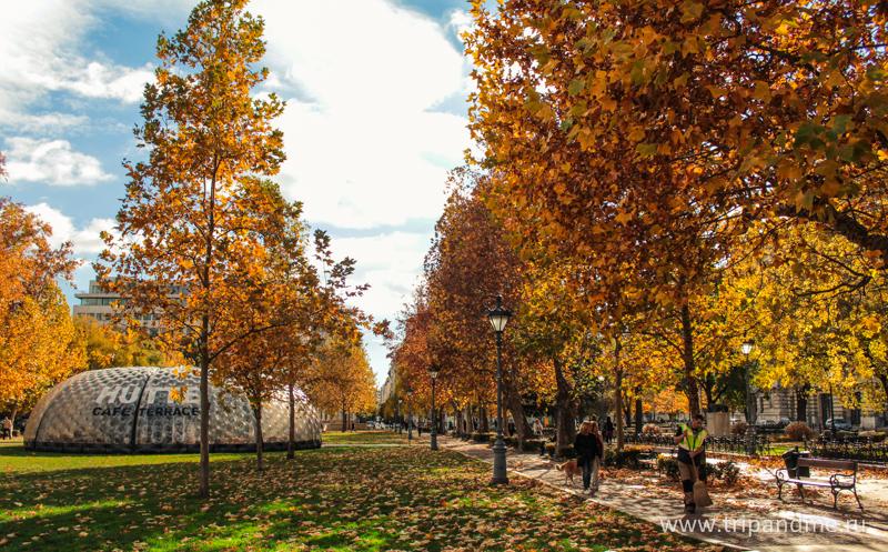 Осенний Будапешт 03.jpg