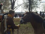 Приводим коня в чувство