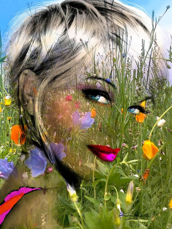 Портреты в стиле поп-арт Энджи Браун (Angie Braun)