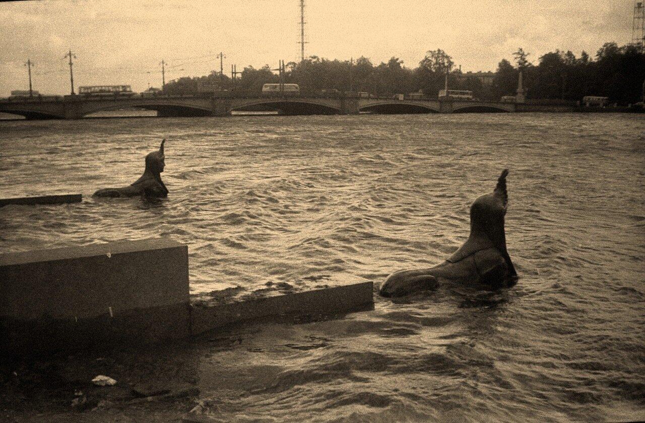 1976. На Каменном острове, наводнение