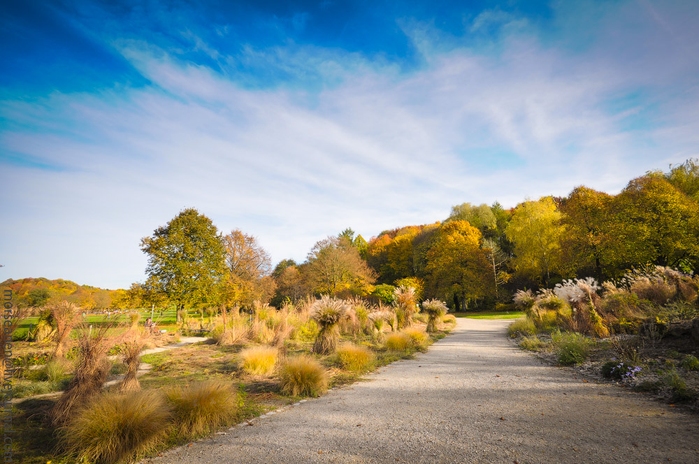 Herbst-Munchen-2013-(60).jpg