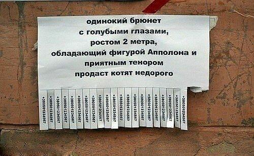 http://img-fotki.yandex.ru/get/9503/1089349.2/0_a84dc_9fd216dc_L.jpg
