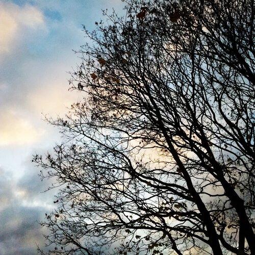 Осень в Тильбурге