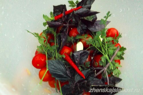 базилик, петрушка, чеснок и перец для соления помидор
