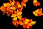Осень32