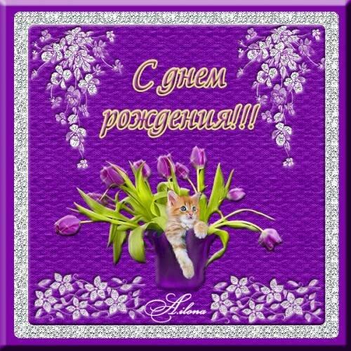 С Днем Рождения! Ваза с цветами, котенок. открытка поздравление картинка