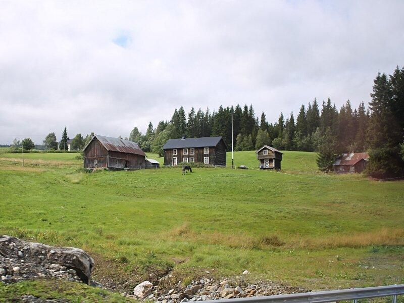 Sør-Trøndelag, Holtalen. farm