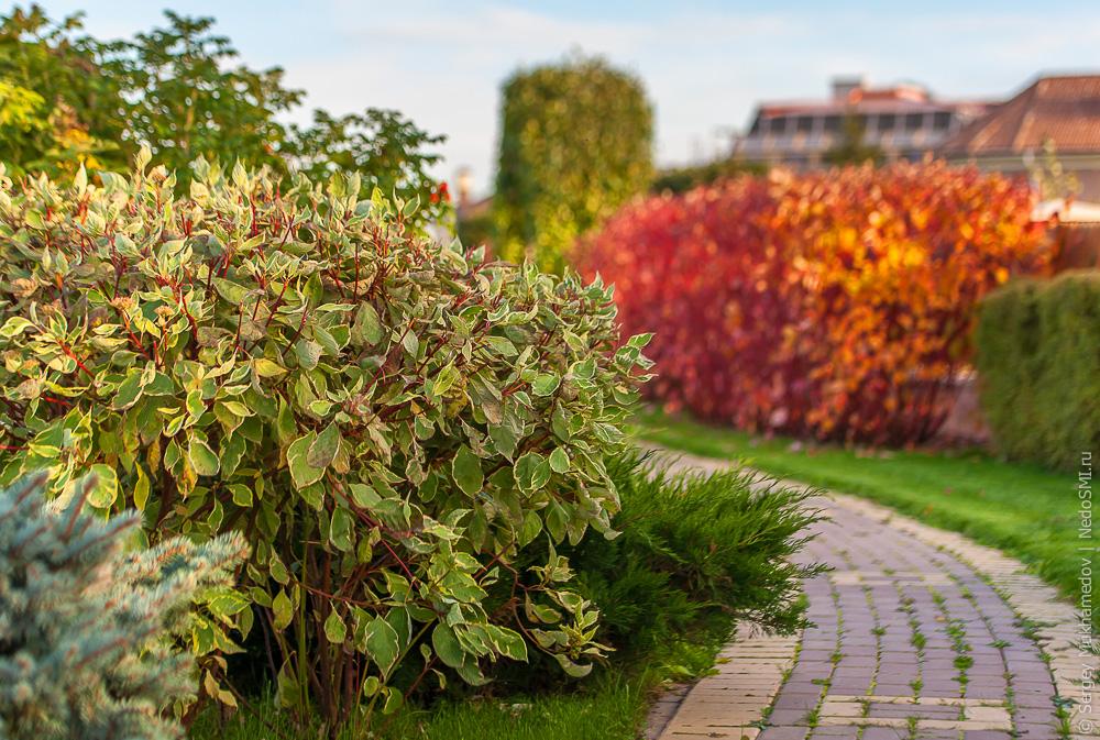 Райские сады Подмосковья