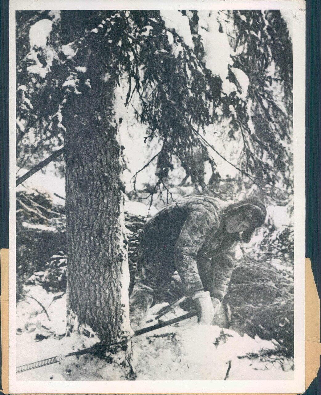 1931. Женщина лесоруб
