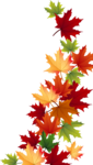 Осень55