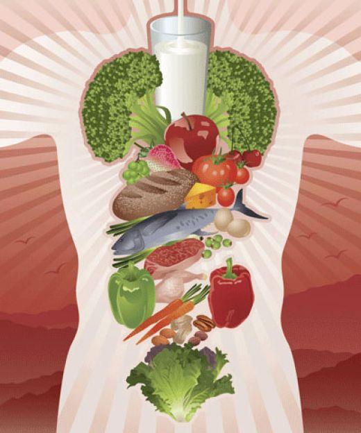 Здоровый кишечник зависит от пищи