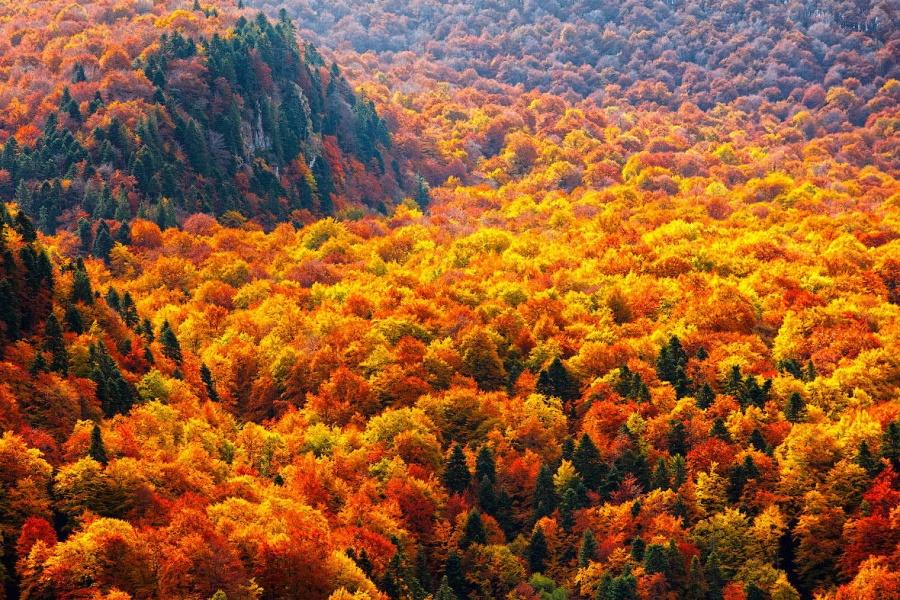 Самые потрясающие фотографии сентября, которые невозможно не посмотреть! 0 148e75 350f1e31 orig