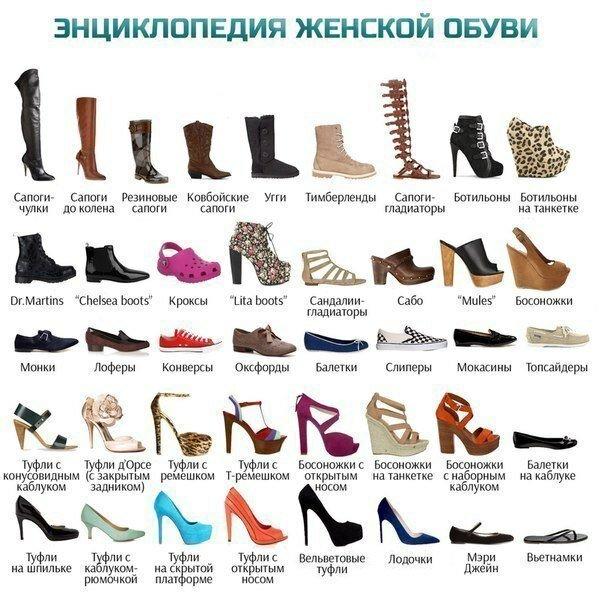Энциклопедия женской обуви