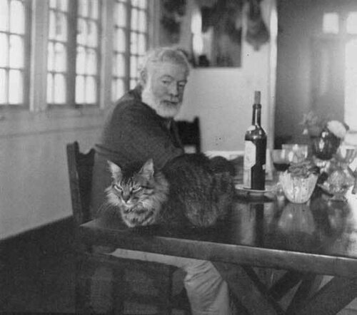 Эрнест Хемингуэй и кошки