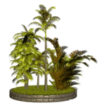 Palms  (46).png