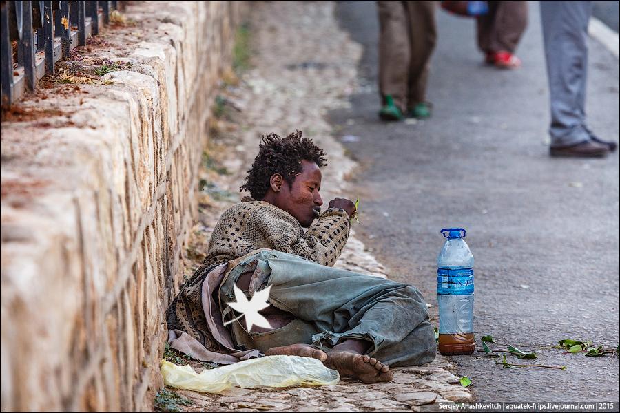 Рынок ката в Эфиопии