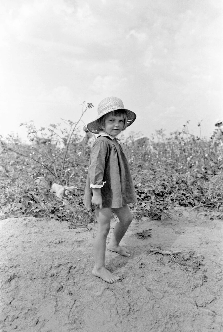 Ребенок фермера на хлопковом поле в Арканзасе, 1938