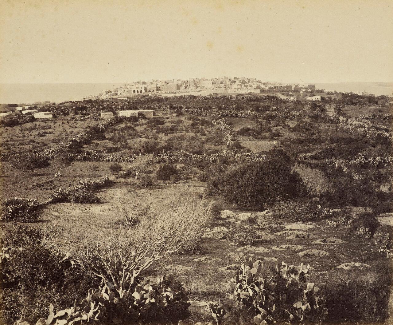 Март 1862. Яффо с юга
