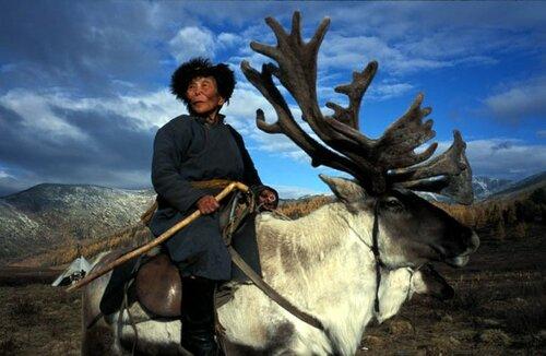 Туры в Монголию: разнообразят отдых