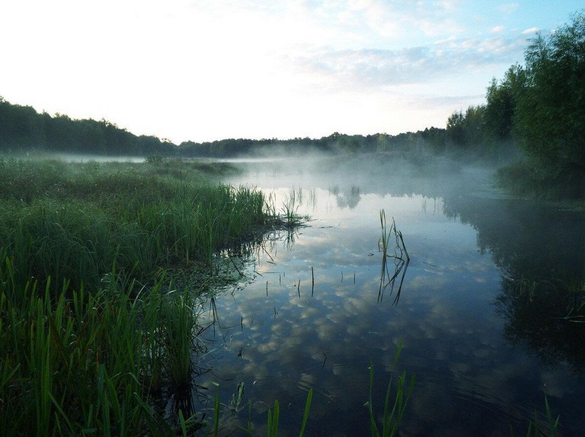 Фото из кармана. Беларусь.