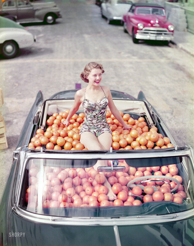 Circa 1951. Swimsuit model in Cadillac convertible filled with oranges