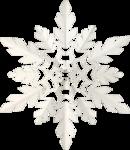 winter dreams (75).png
