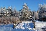 Зимние пейзажи-2009