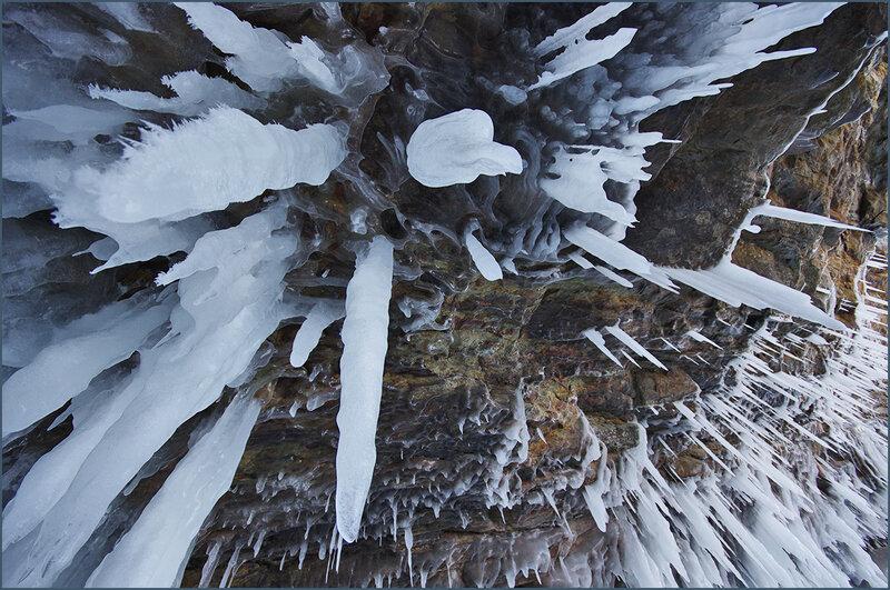 Удивительная природа Байкала