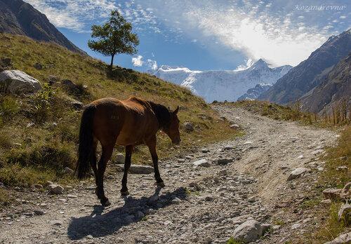 по дороге к альплагерю