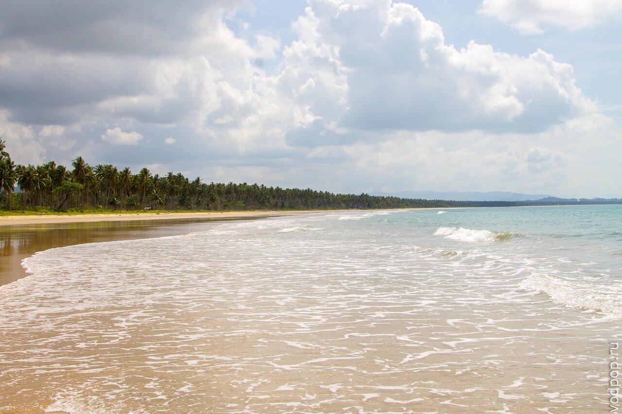 Пляж на булыгина барнаул фото