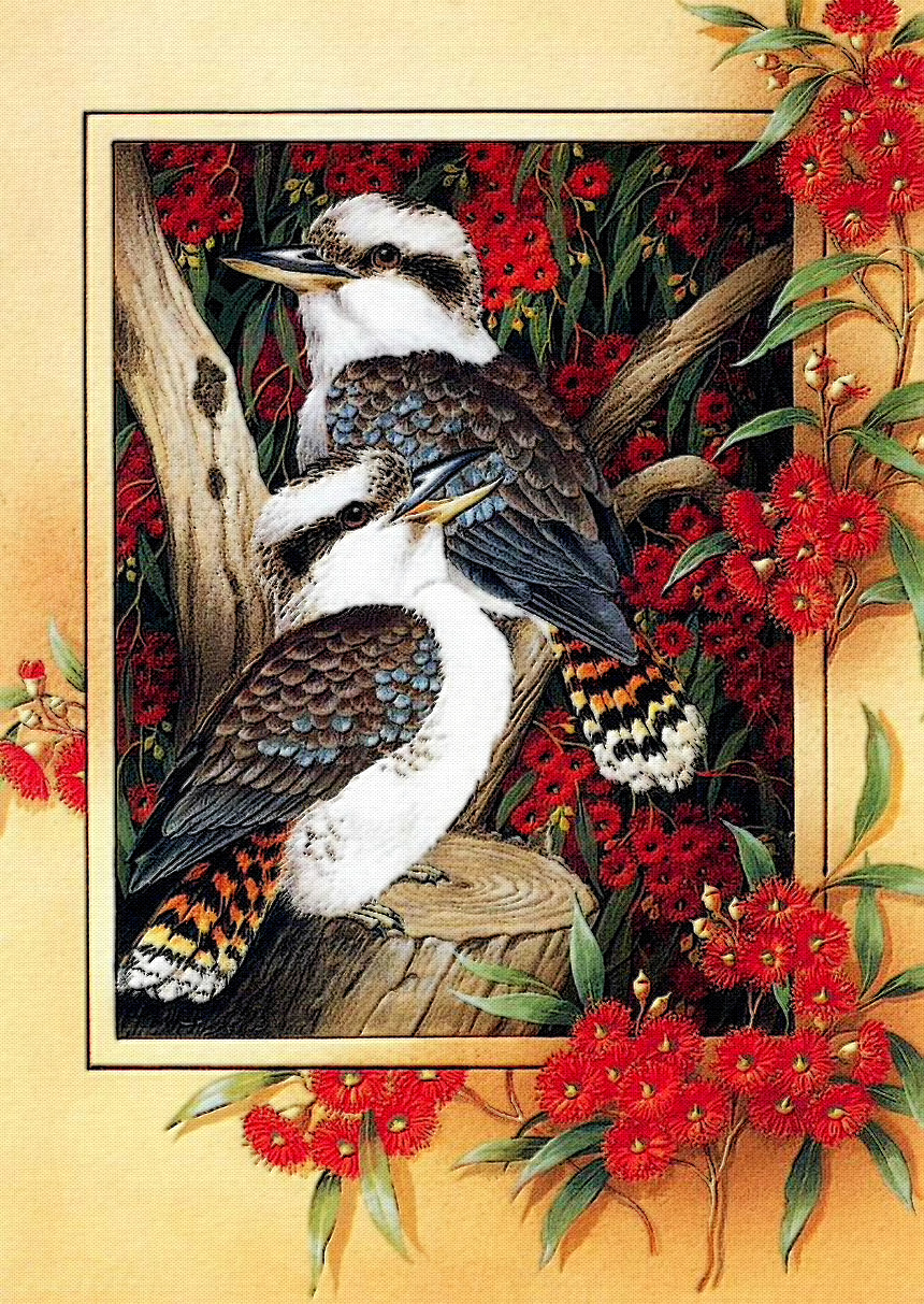 Птицы Shirley Barbers