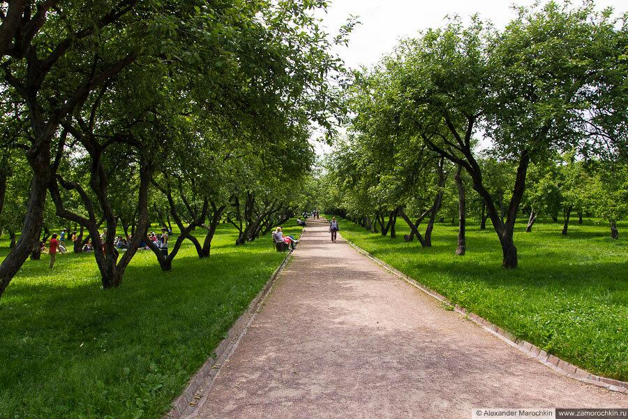 Вознесенски сад в Коломенском
