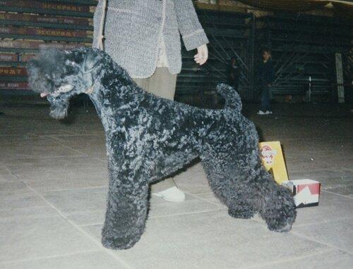 Эллайз Лаэрт, зима 2002, Пермь