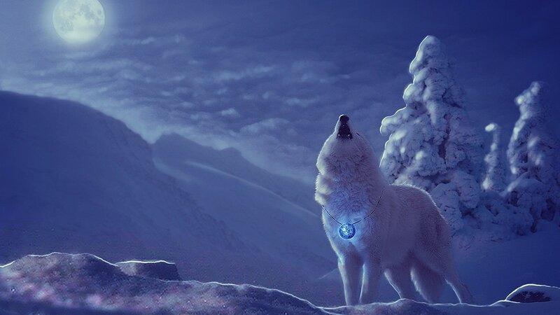 【本博精典素材篇】美丽的冬季雪景 - 浪漫人生 - .