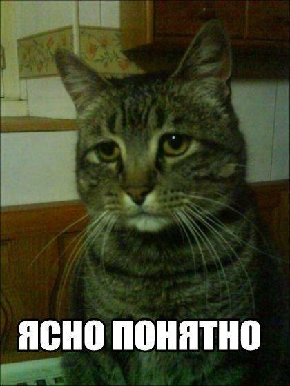 http://img-fotki.yandex.ru/get/9506/85453891.3/0_bb9a4_2be191e7_XL.jpg