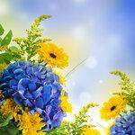Spring Flowers #4 (4).jpg