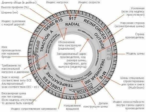 Все, что нужно знать о колесе (1 фото)