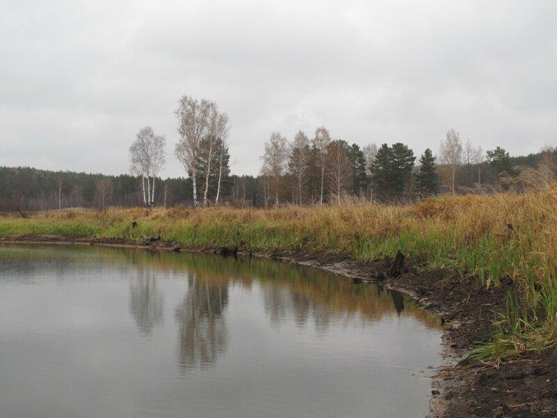 Поселок Курганово. Осень