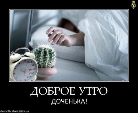 1334689569_poster_9492.jpeg
